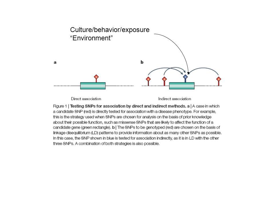 Culture/behavior/exposure Environment