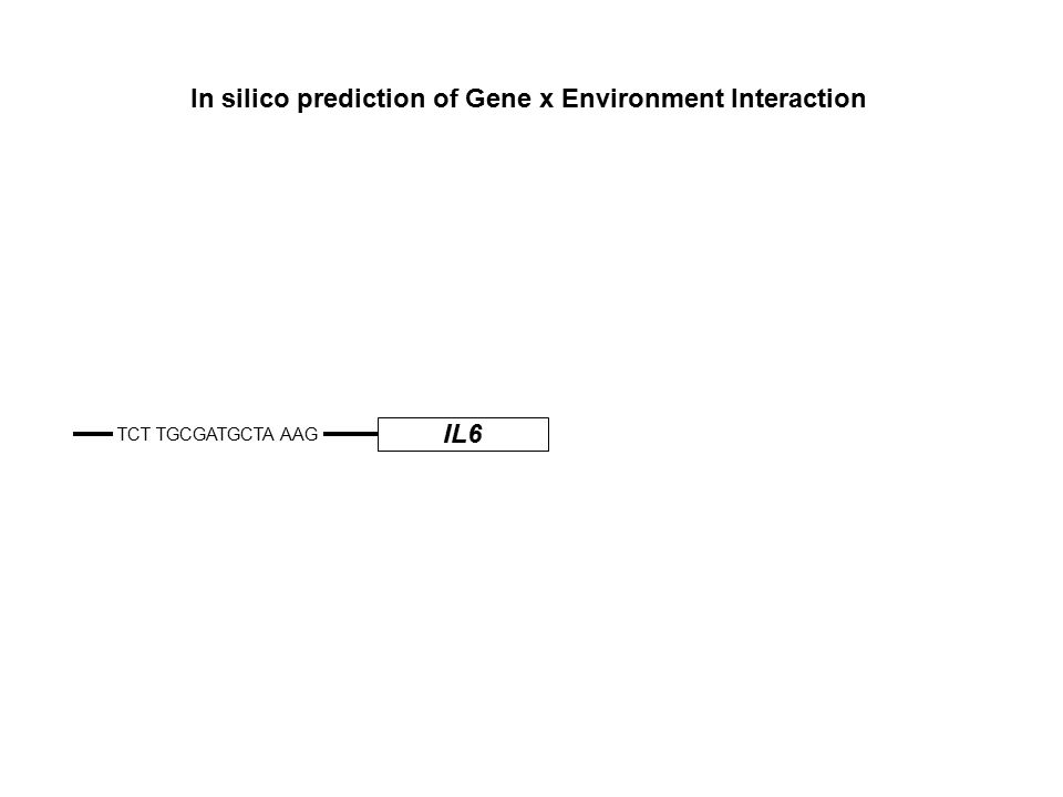 IL6 TCT TGCGATGCTA AAG In silico prediction of Gene x Environment Interaction