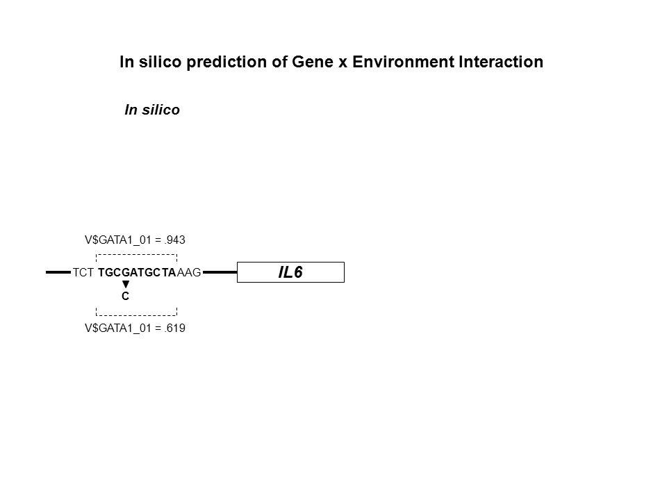 IL6 TCT TGCGATGCTA AAG C V$GATA1_01 =.943 V$GATA1_01 =.619 In silico prediction of Gene x Environment Interaction In silico