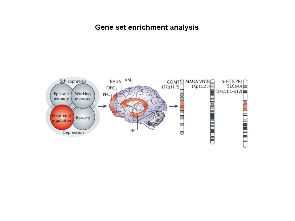 Gene set enrichment analysis