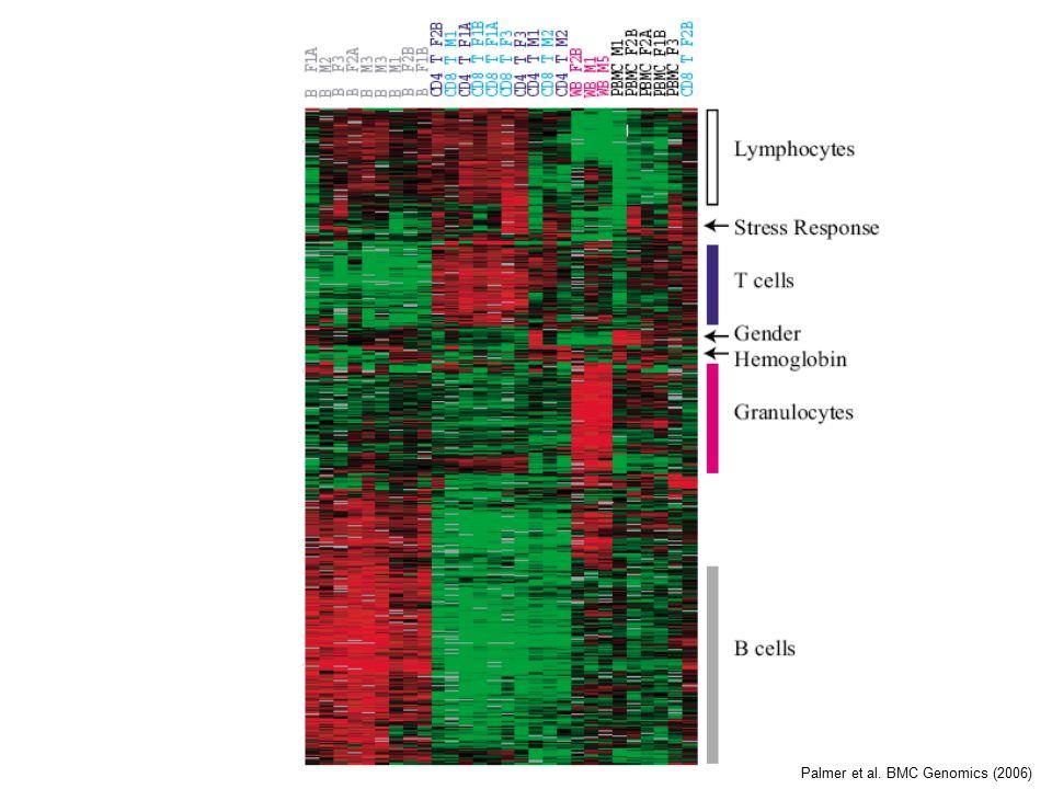 Palmer et al. BMC Genomics (2006)