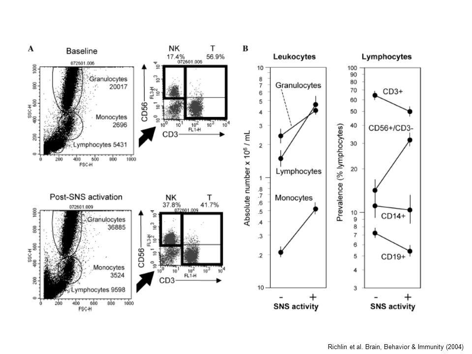 Richlin et al. Brain, Behavior & Immunity (2004)