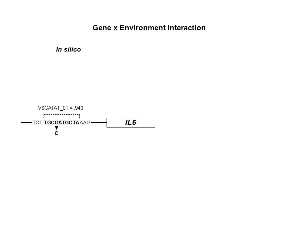 IL6 TCT TGCGATGCTA AAG C V$GATA1_01 =.943 Gene x Environment Interaction In silico