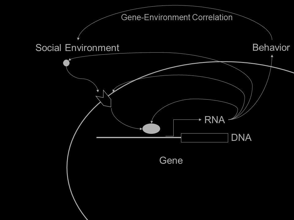 Social Environment Gene IL6 RNA DNA Behavior Gene-Environment Correlation