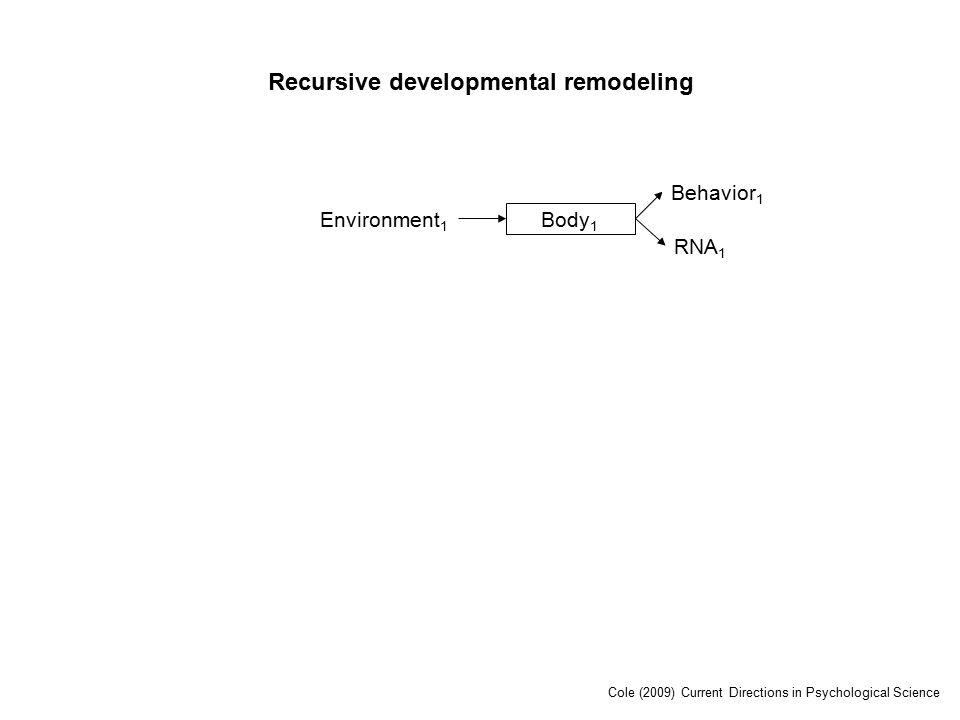 Environment 1 Body 1 RNA 1 Behavior 1 Recursive developmental remodeling Cole (2009) Current Directions in Psychological Science
