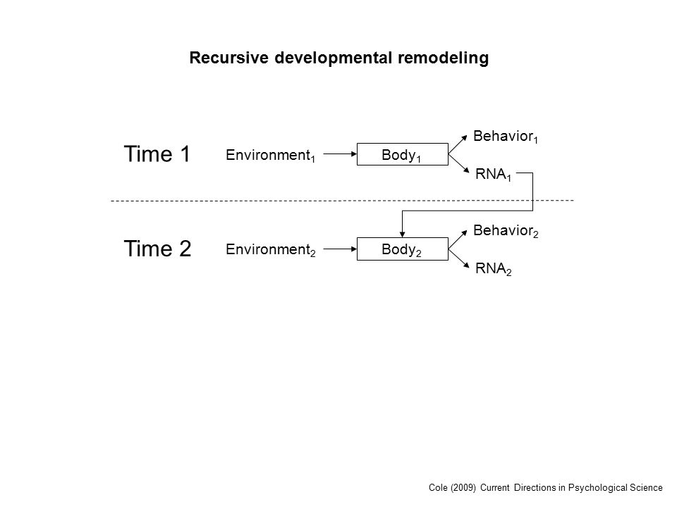 Time 1 Environment 1 Body 1 RNA 1 Behavior 1 Time 2 Environment 2 Body 2 RNA 2 Behavior 2 Recursive developmental remodeling Cole (2009) Current Directions in Psychological Science