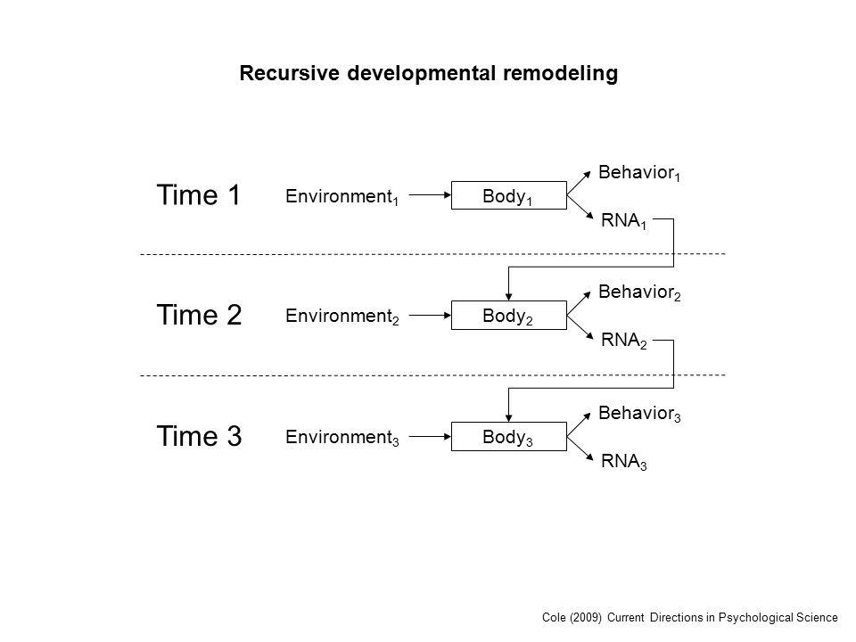 Time 1 Environment 1 Body 1 RNA 1 Behavior 1 Time 2 Environment 2 Body 2 RNA 2 Behavior 2 Time 3 Environment 3 Body 3 RNA 3 Behavior 3 Recursive developmental remodeling Cole (2009) Current Directions in Psychological Science