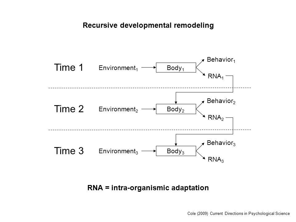 Time 1 Environment 1 Body 1 RNA 1 Behavior 1 Time 2 Environment 2 Body 2 RNA 2 Behavior 2 Time 3 Environment 3 Body 3 RNA 3 Behavior 3 Recursive developmental remodeling RNA = intra-organismic adaptation Cole (2009) Current Directions in Psychological Science