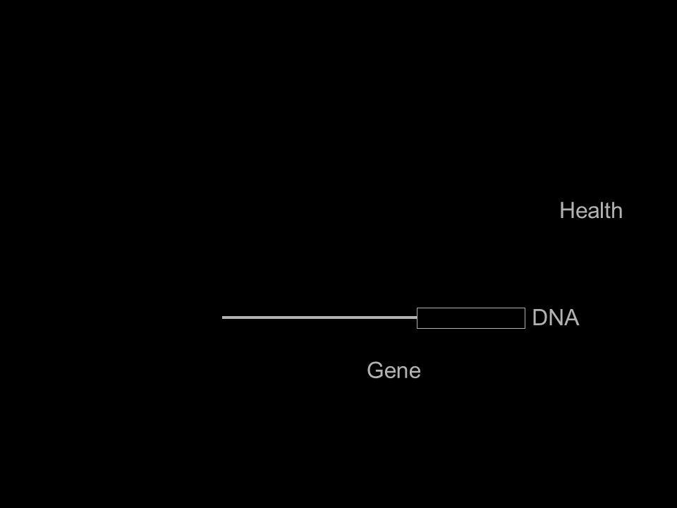 Gene Health IL6 DNA