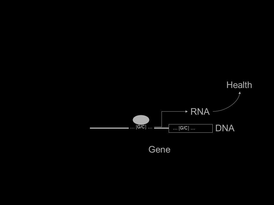 Gene Health IL6 RNA DNA … [G/C] …