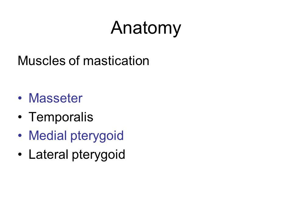 Muscles of mastication Masseter Temporalis Medial pterygoid Lateral pterygoid