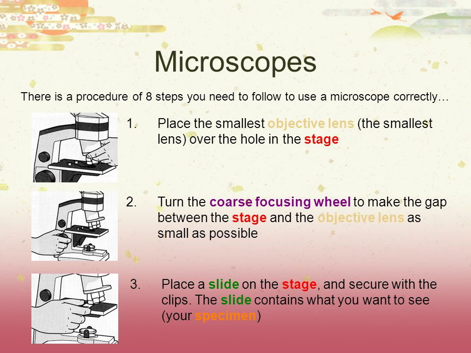 Microscopes There is a procedure of 8 steps you need to follow to use a microscope correctly… 1.Place the smallest objective lens (the smallest lens) over the hole in the stage 2.Turn the coarse focusing wheel to make the gap between the stage and the objective lens as small as possible 3.Place a slide on the stage, and secure with the clips.