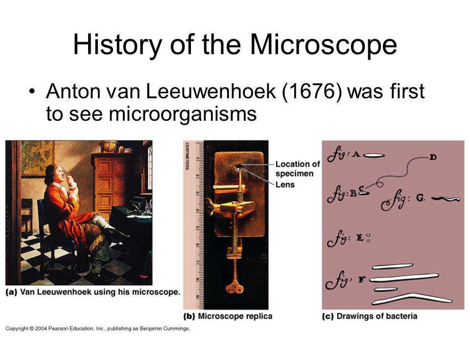History of the Microscope Anton van Leeuwenhoek (1676) was first to see microorganisms