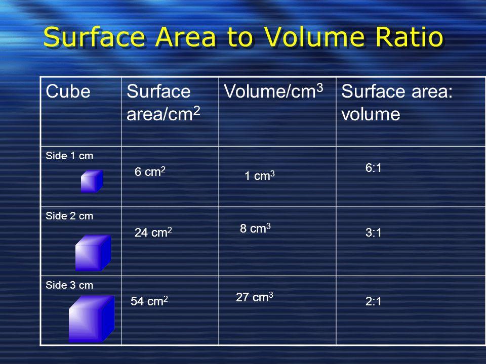 Surface Area to Volume Ratio CubeSurface area/cm 2 Volume/cm 3 Surface area: volume Side 1 cm Side 2 cm Side 3 cm 6 cm 2 24 cm 2 54 cm 2 8 cm 3 1 cm 3 27 cm 3 2:1 3:1 6:1