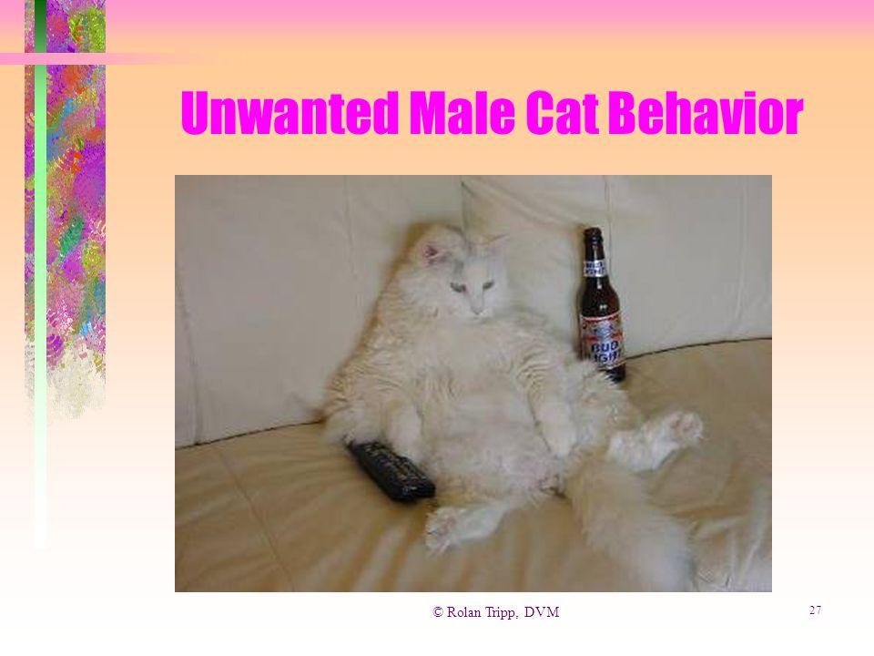© Rolan Tripp, DVM 27 Unwanted Male Cat Behavior
