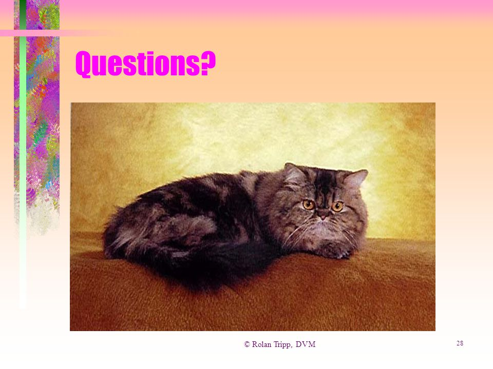 © Rolan Tripp, DVM 28 Questions