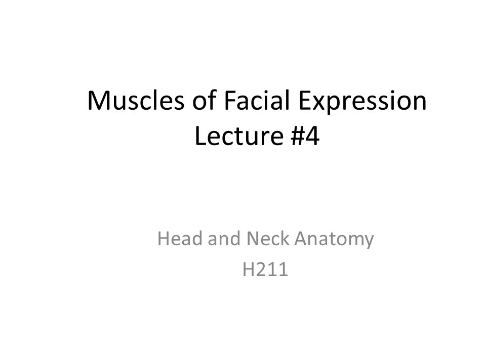 Muscles of Facial Expression Lecture #4 Head and Neck Anatomy H211