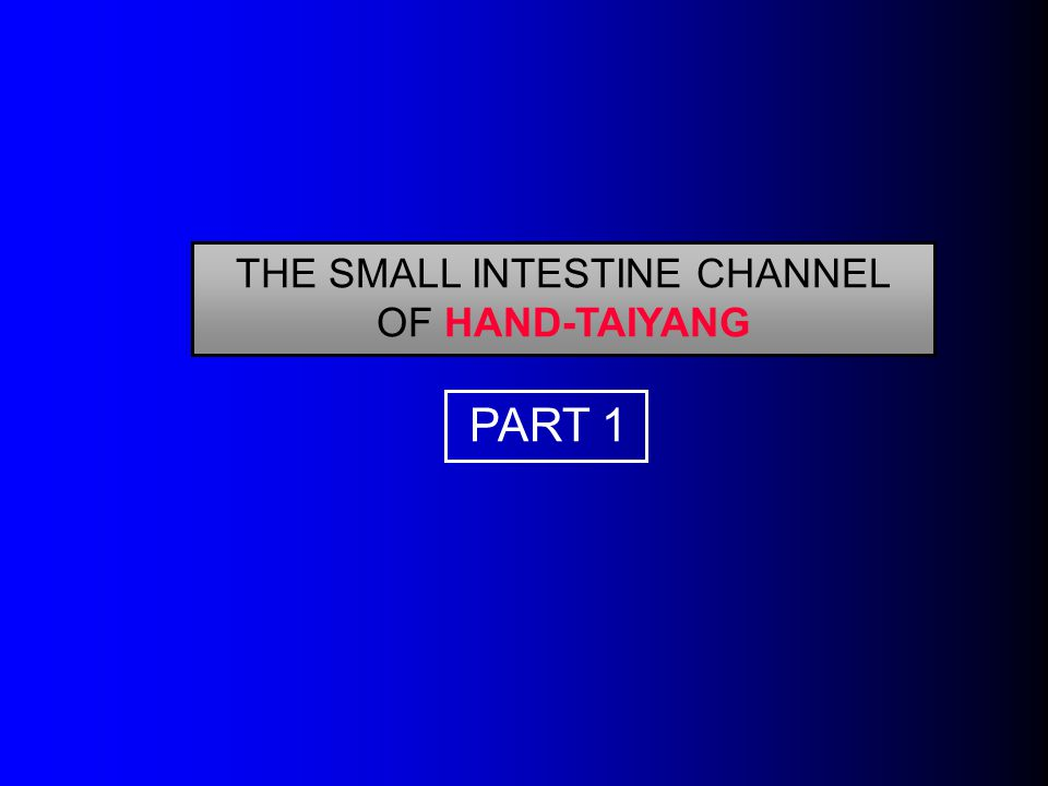 THE SMALL INTESTINE CHANNEL OF HAND-TAIYANG PART 1