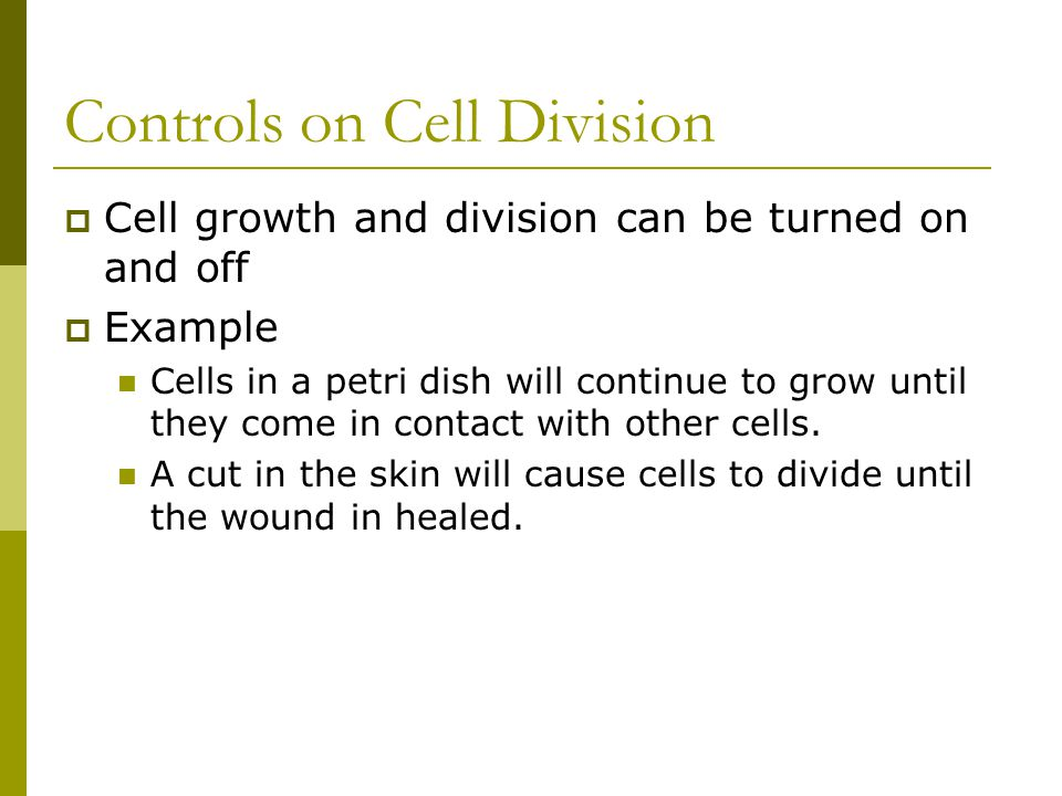 Controls on Cell Division  Cell growth and division can be turned on and off  Example Cells in a petri dish will continue to grow until they come in