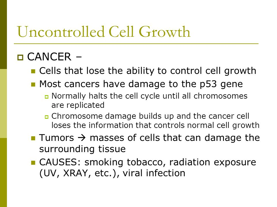 Uncontrolled Cell Growth  CANCER – Cells that lose the ability to control cell growth Most cancers have damage to the p53 gene  Normally halts the c