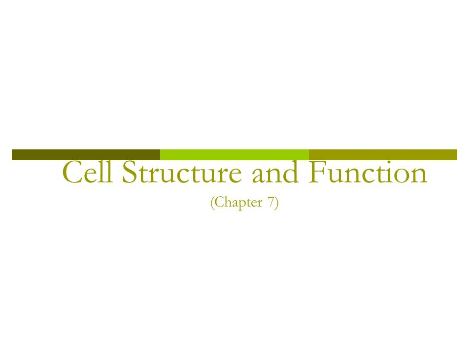 Life is Cellular  How did the Cell Theory develop.