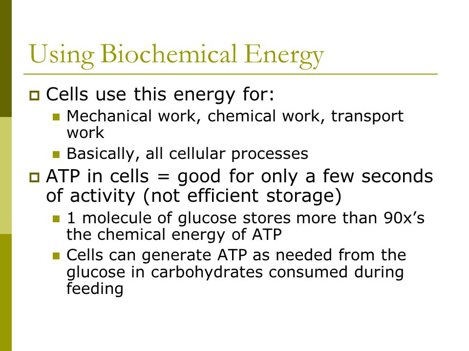 Using Biochemical Energy  Cells use this energy for: Mechanical work, chemical work, transport work Basically, all cellular processes  ATP in cells