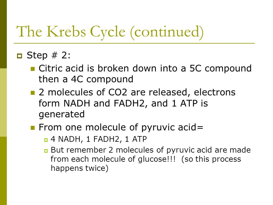 The Krebs Cycle (continued)  Step # 2: Citric acid is broken down into a 5C compound then a 4C compound 2 molecules of CO2 are released, electrons fo
