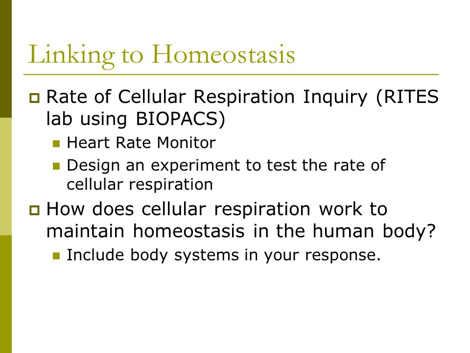 Linking to Homeostasis  Rate of Cellular Respiration Inquiry (RITES lab using BIOPACS) Heart Rate Monitor Design an experiment to test the rate of ce