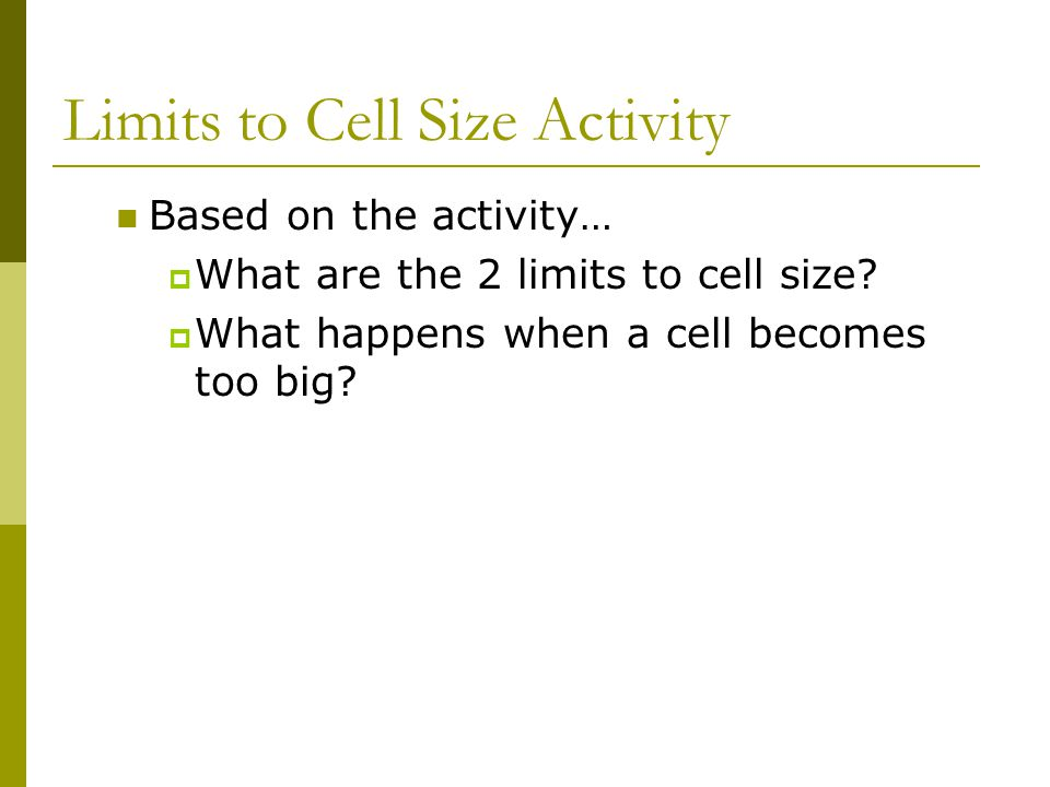Limits to Cell Size Activity Based on the activity…  What are the 2 limits to cell size?  What happens when a cell becomes too big?