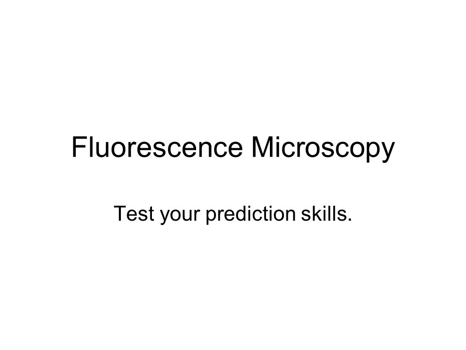 Fluorescence Microscopy Test your prediction skills.
