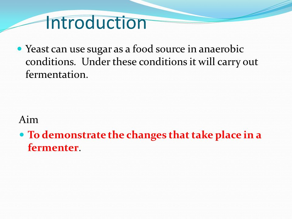 Introduction Yeast can use sugar as a food source in anaerobic conditions.