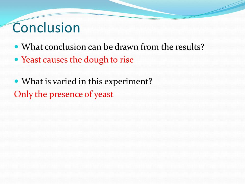 Conclusion What conclusion can be drawn from the results.
