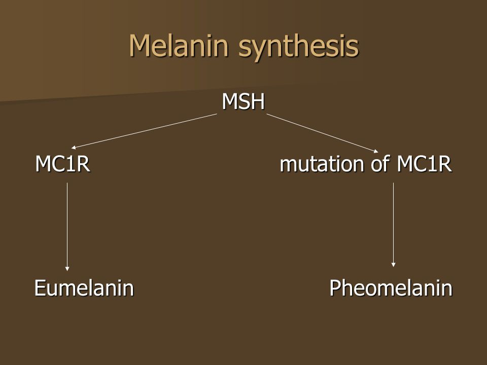 Whether the melanin is deposited in the epidermis or dermis is important therapeutically because dermal hyperpigmentation is much more challenging to treat Whether the melanin is deposited in the epidermis or dermis is important therapeutically because dermal hyperpigmentation is much more challenging to treat