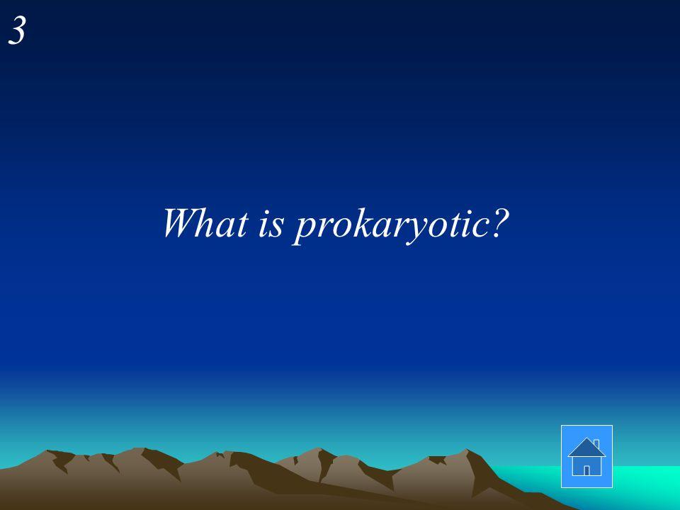 What is prokaryotic? 3