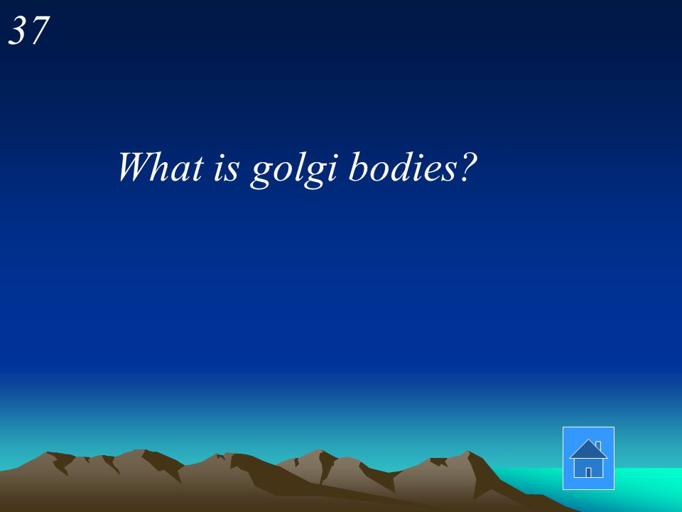 36 Which of the following would you not find in a bacterial (prokaryotic) cell? -ribosomes -cell membrane -golgi bodies -DNA