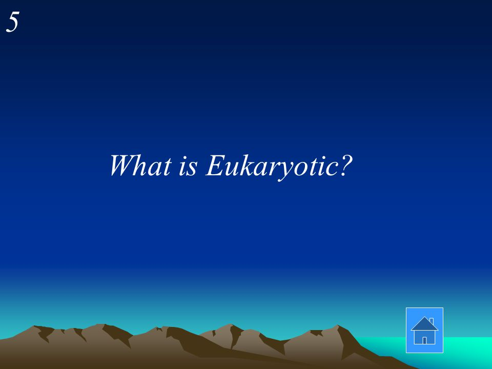 5 What is Eukaryotic?