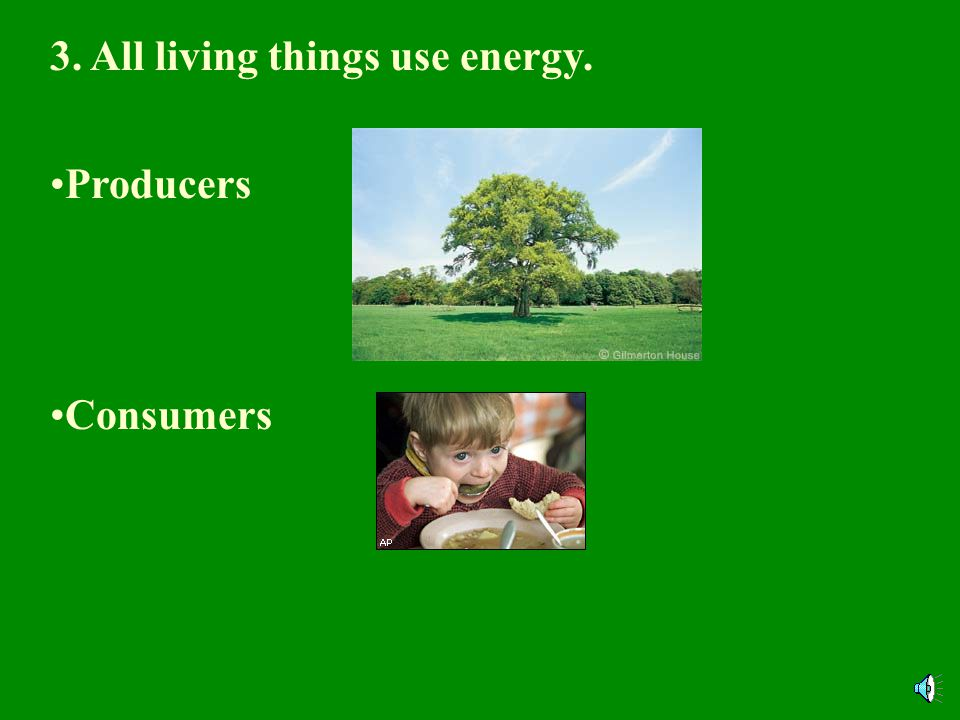 3. All living things use energy. Producers Consumers