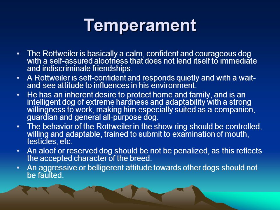 Temperament The Rottweiler is basically a calm, confident and courageous dog with a self-assured aloofness that does not lend itself to immediate and indiscriminate friendships.