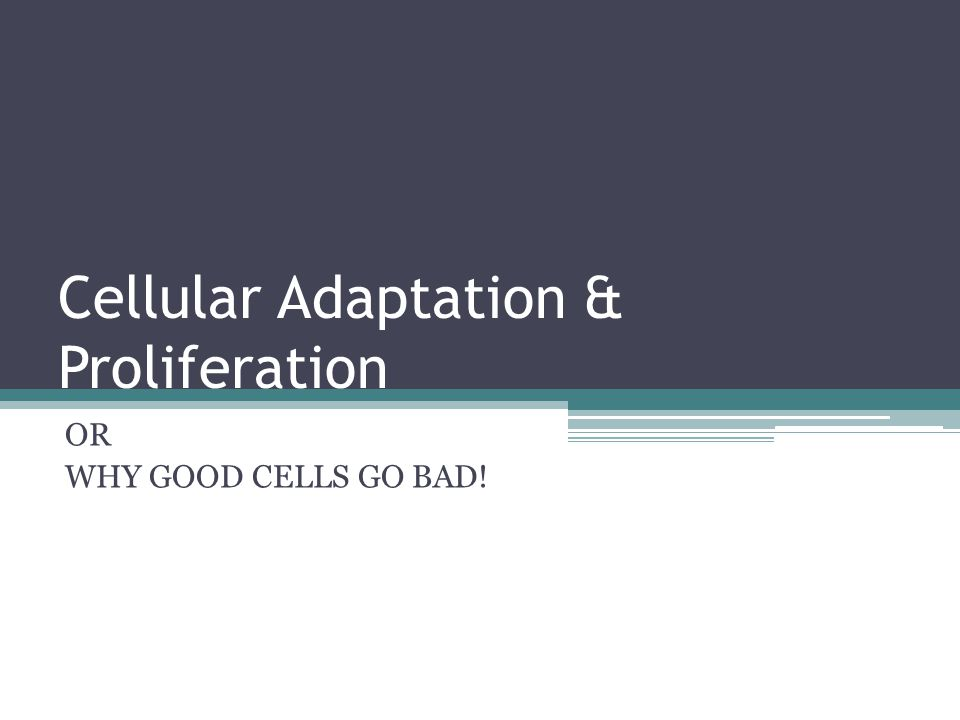 Cellular Adaptation & Proliferation OR WHY GOOD CELLS GO BAD!