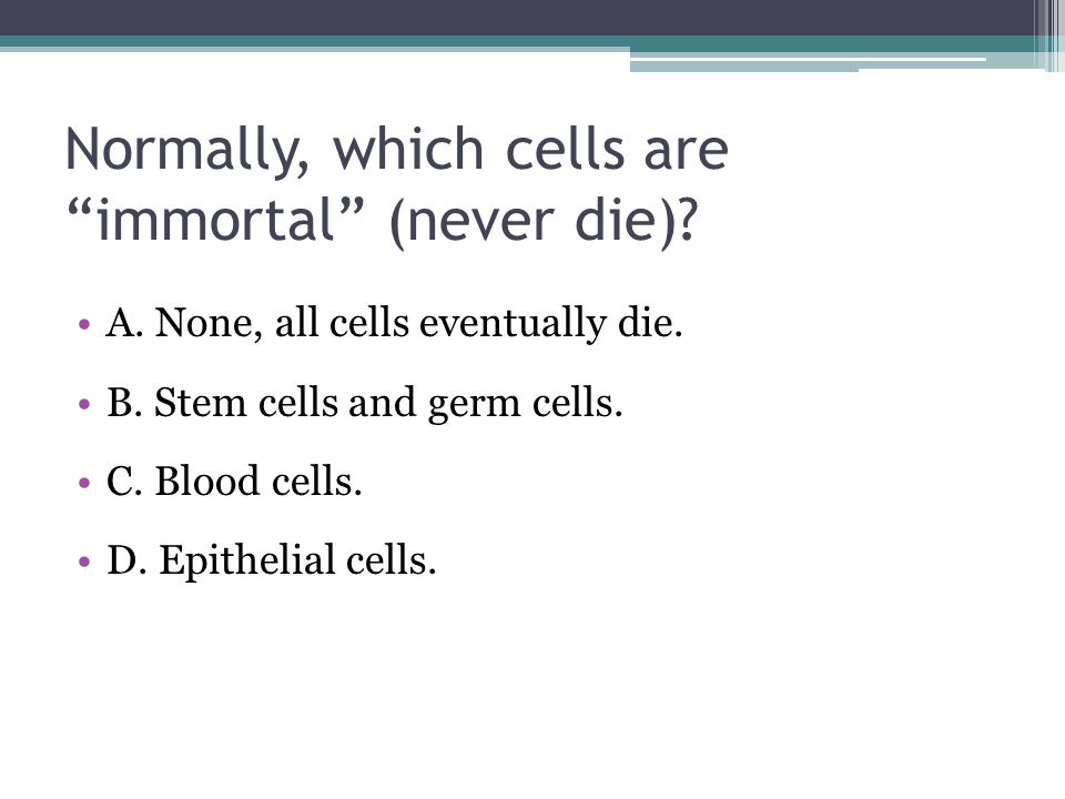 "Normally, which cells are ""immortal"" (never die)? A. None, all cells eventually die. B. Stem cells and germ cells. C. Blood cells. D. Epithelial cells"