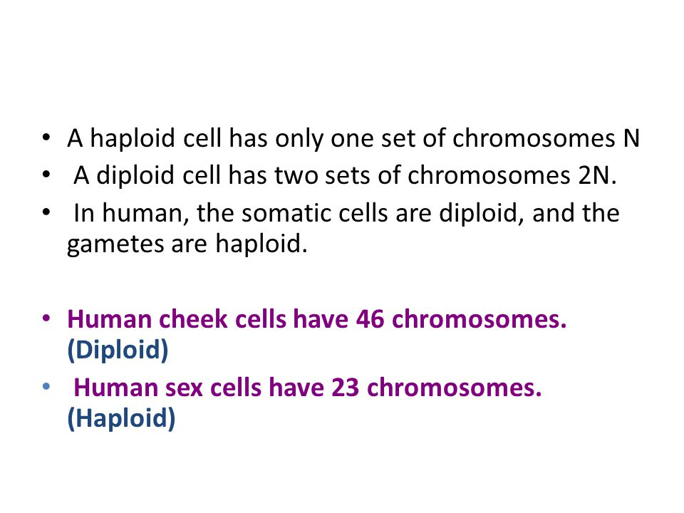 A haploid cell has only one set of chromosomes N A diploid cell has two sets of chromosomes 2N. In human, the somatic cells are diploid, and the gamet