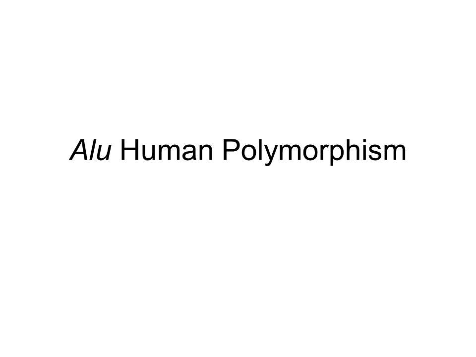 Alu Human Polymorphism