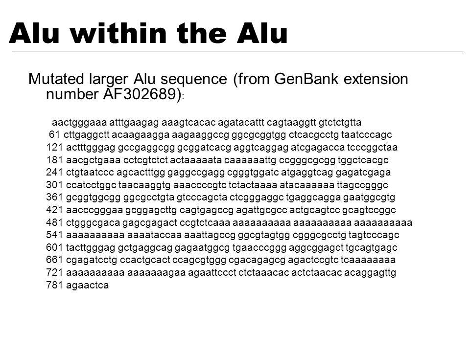 Mutated larger Alu sequence (from GenBank extension number AF302689) : aactgggaaa atttgaagag aaagtcacac agatacattt cagtaaggtt gtctctgtta 61 cttgaggctt