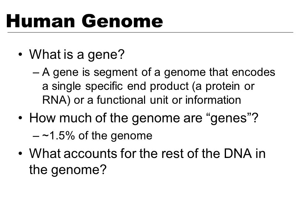 What is a gene? –A gene is segment of a genome that encodes a single specific end product (a protein or RNA) or a functional unit or information How m