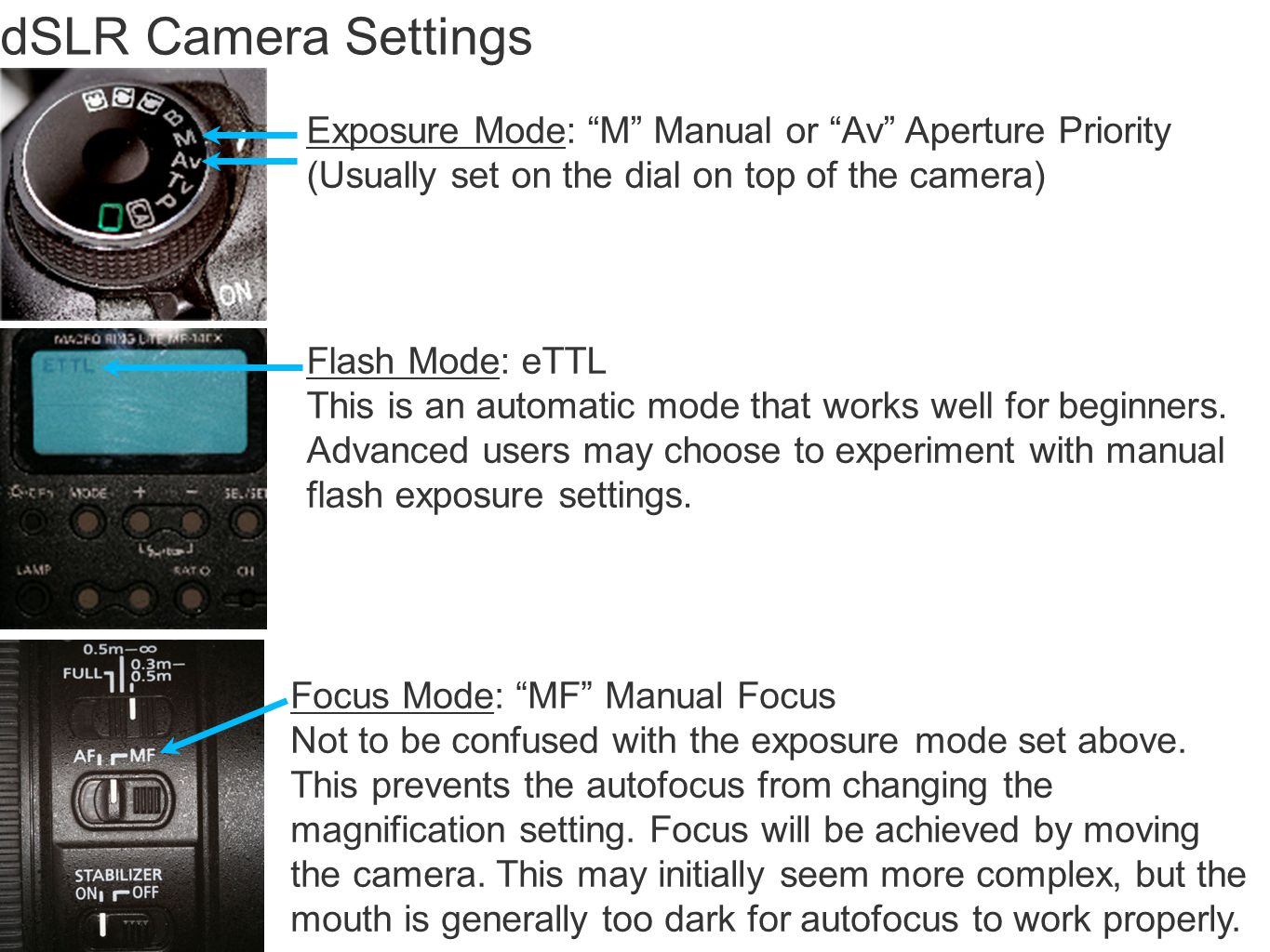 dSLR Camera Settings Exposure Mode: M Manual or Av Aperture Priority (Usually set on the dial on top of the camera) Flash Mode: eTTL This is an automatic mode that works well for beginners.