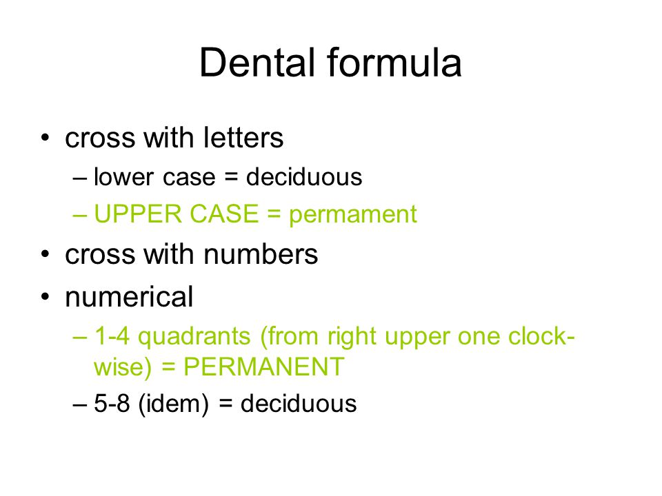 Dental formula cross with letters –lower case = deciduous –UPPER CASE = permament cross with numbers numerical –1-4 quadrants (from right upper one cl