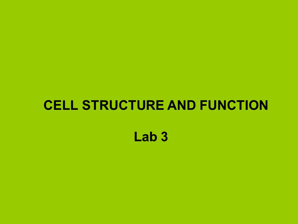CELL STRUCTURE AND FUNCTION Lab 3