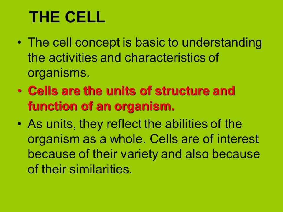THE CELL The cell concept is basic to understanding the activities and characteristics of organisms.