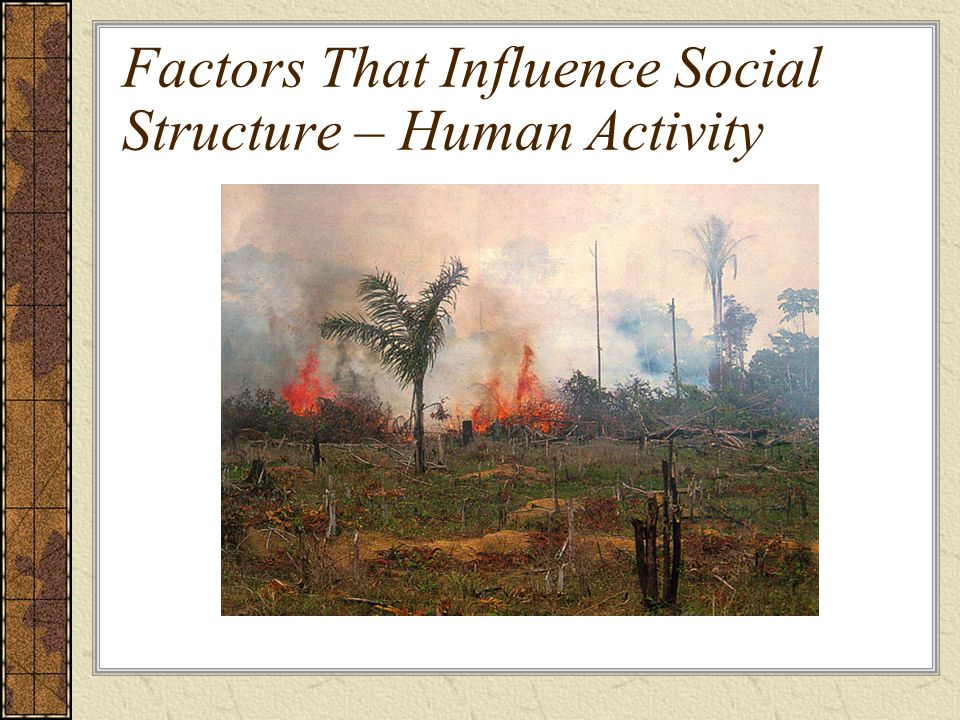 Factors That Influence Social Structure – Human Activity
