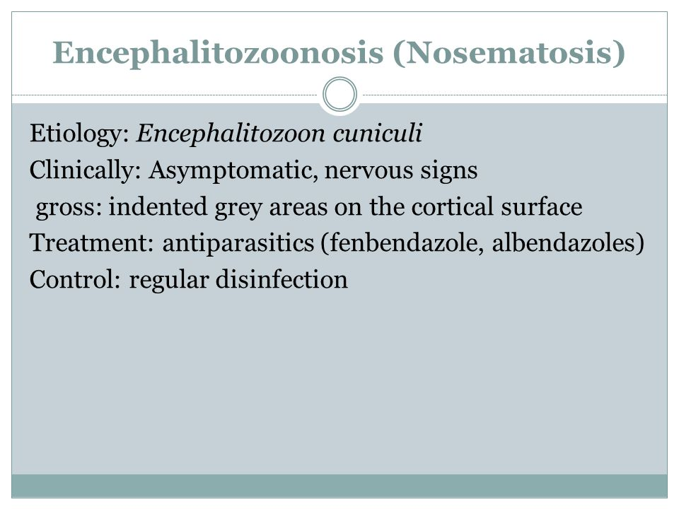 Encephalitozoonosis (Nosematosis) Etiology: Encephalitozoon cuniculi Clinically: Asymptomatic, nervous signs gross: indented grey areas on the cortical surface Treatment: antiparasitics (fenbendazole, albendazoles) Control: regular disinfection